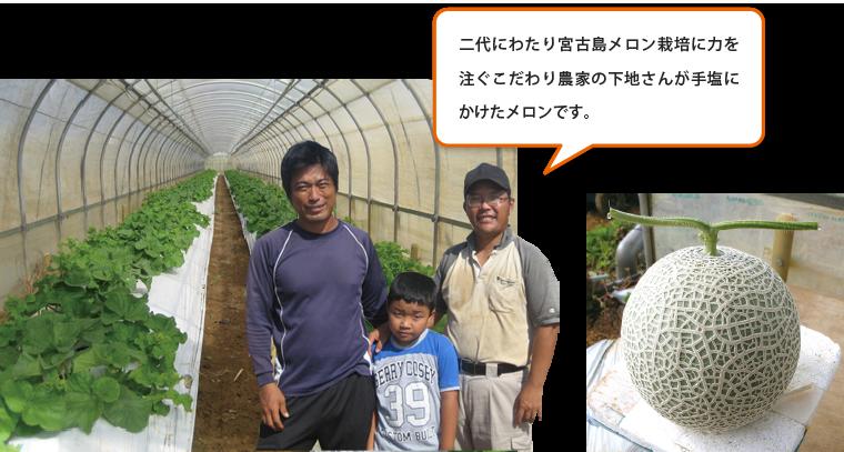 メロン栽培農家の下地さん